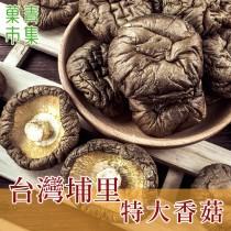臺灣埔里特大香菇
