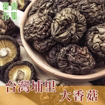 臺灣埔里大香菇