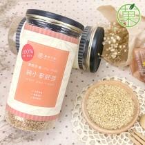 純小麥胚芽 無糖100%純天然 罐裝附木勺